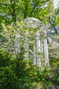 Temple - pagoda with tall classical columns partly hidden in blooming dogwood trees and other lush spring foliage Royalty Free Stock Photo