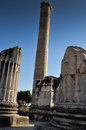 Temple ruin columns in ruins of a greek style bright sunlight trees and blue sky and other surrounding buildings and elements Stock Photos