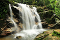 Templer's Park Water Falls Royalty Free Stock Photo