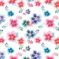 Tender beautiful floral herbal gorgeous bright cute spring colorful mallow different shapes with colorful streaks pattern Royalty Free Stock Photo