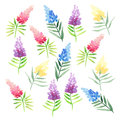 Tender delicate cute elegant lovely floral colorful spring summer red, blue, purple and yellow wildflowers with green leaves patte