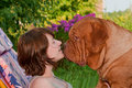 Tender Dog Kiss Royalty Free Stock Photography