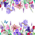 Tender floral empty template with butterfly, vector hand drawn design on white