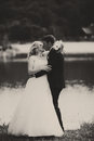 A tender kiss of newlyweds standing on the lake shore Royalty Free Stock Photo