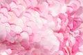 Tender lght pink textile petals texture