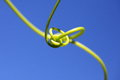 Tendril intertwined macro Stock Photo