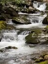 Tennessee Small Falls Royalty Free Stock Photo