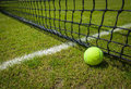 Tennis ball close up near the net on a grass court with a white marking Stock Image