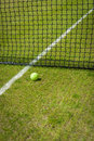 Tennis ball close up near the net on a grass court with a white marking Royalty Free Stock Images