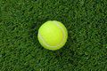 Tennis ball on grass Royalty Free Stock Photos
