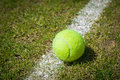 Tennis ball on a grass court neer the white line Stock Image