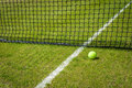 Tennis ball near the net on a grass court with a white marking Royalty Free Stock Photo