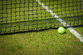 Tennis ball near the net on a grass court with a white marking Stock Photography