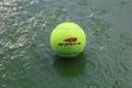 Tennis ball at rain delay during US Open 2014 at Arthur Ashe Stadium Royalty Free Stock Photo