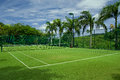 Tennis grass court good with  beautiful background Royalty Free Stock Photo