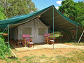 Tent in african safari Stock Photography