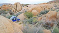 Tent Camping in Joshua Tree National Park - Panorama Royalty Free Stock Photo