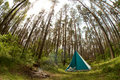 Tent in forest Stock Photo