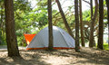 Tent in forest.JH Royalty Free Stock Photo