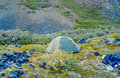 Tent pitched in the Wrangell-St. Elias Park Royalty Free Stock Photo