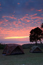 Tents for campers on the hill in the morning in thailand Stock Photos