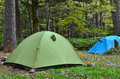 Tents at campsite in forest a green and blue tent erected a the Stock Photography