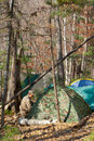 Tents in forest 1 Stock Photo