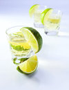 Tequila with lime . Stock Image