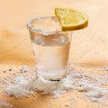 Tequila shot with lemon and salt Royalty Free Stock Photos