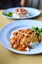 Teriyaki chicken rice Royalty Free Stock Photo