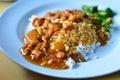 Teriyaki chicken rice Stock Photography