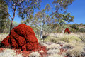 Termite Mounds & Blue Sky Royalty Free Stock Images