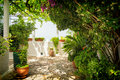 Terrace with full of plants and on greek island Corfu, Greece Royalty Free Stock Photo