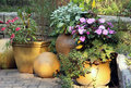 Terrace garden with pot plants Royalty Free Stock Photos