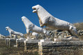 The terrace of the lions on delos island cyclades greece Royalty Free Stock Photo