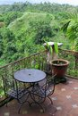 Terrace in ubud bali with a view at the tropical forest Royalty Free Stock Image