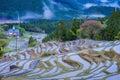 Terraced rice field at Maruyama Senmaida , Kumano City, Mie Prefecture Royalty Free Stock Photo