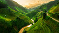 Terraced rice field in Mu Cang Chai, Vietnam Royalty Free Stock Photo