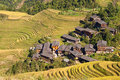 Terraced rice fields near Guilin, Guangxi Royalty Free Stock Photo