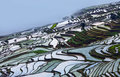 Terraced rice fields in yuanyang county yunnan china musty morning lies at an altitude ranging from along the red river up to Stock Image