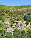 Terraced Vineyards of Malevall France Royalty Free Stock Photo