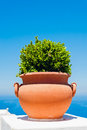 Terracotta flowerpot capri pot with plant on blue sea and sky background photo taken city campania italy Stock Image