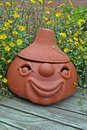 Terracotta head with Sanvitalia Stock Image