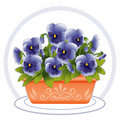 Terracotta Planter with Sky Blue Pansies  Royalty Free Stock Photos