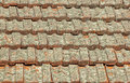 Terracotta Roof Tiles Covered in Lichen Fungus Royalty Free Stock Photo