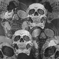 Terrible frightening seamless pattern with skull Royalty Free Stock Photo