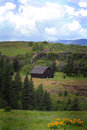 Territorial view with rustic old barn a a distant of a under turbulent cloudy blue skies flowers in foreground Royalty Free Stock Images