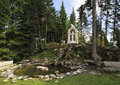 Territory altai crown fir island on the katun river Royalty Free Stock Photo