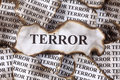 Terror burnt burnt pieces of paper with the word close up Royalty Free Stock Images