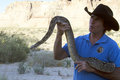 Terry moore with python world renowned movie animal handler displaying a snake Royalty Free Stock Image